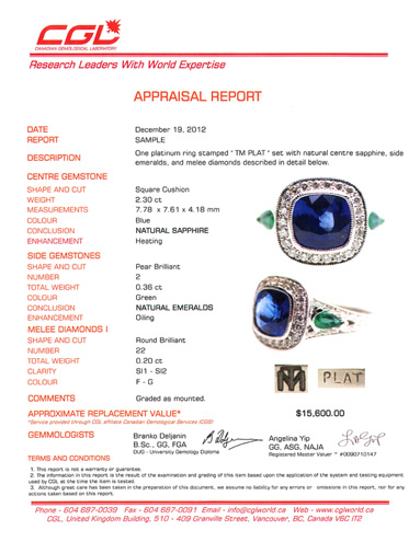 appraisal-report2