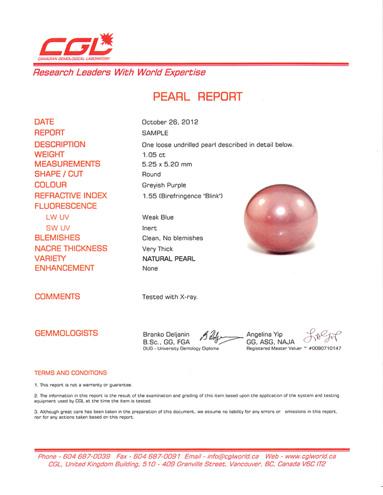 pearl-report